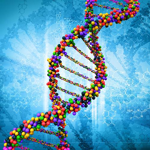 Laboratorium-vyvojovej-genetiky-1