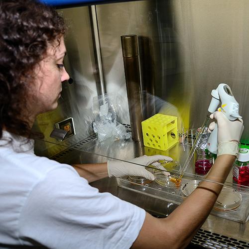 Oddelenie-molekularnej-onkologie