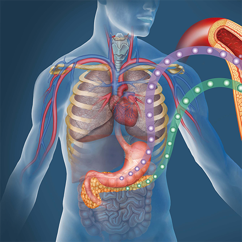 Oddelenie-vyskumu-poruch-metabolizmu-1